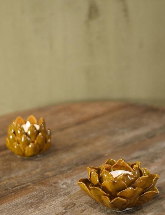 Waxine Magnolia Oker 10x5 Okergeel