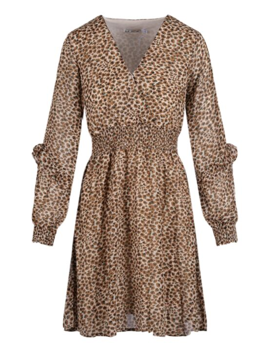Dress Camila Bruin
